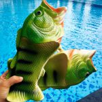 fish sandal